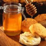 gastronomy-meli