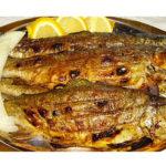 gastronomy-pestrofa