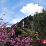 moni-prousou-2015-05-03-14
